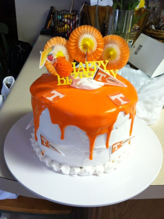 Orange Birthday Cake Big Orange Birthday Cake Go Vols Crafts I Have Madeor Want To