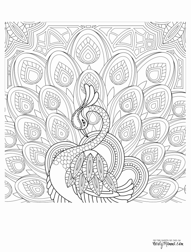 Paisley Coloring Pages Elephant Adult Coloring Pages Beautiful Elephant Abstract Doodle