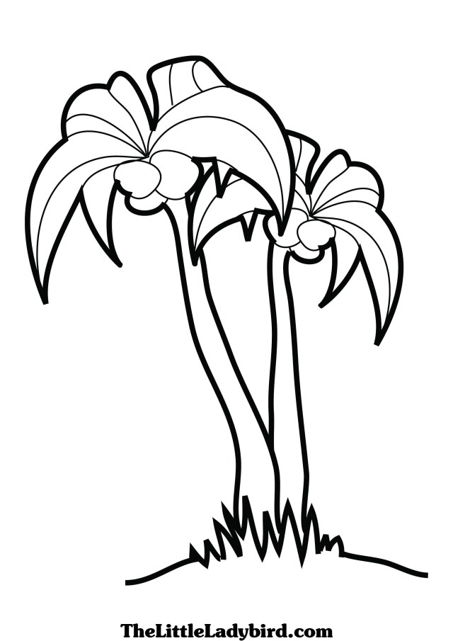 Palm Tree Coloring Pages Free Palm Tree Coloring Page Thelittleladybird