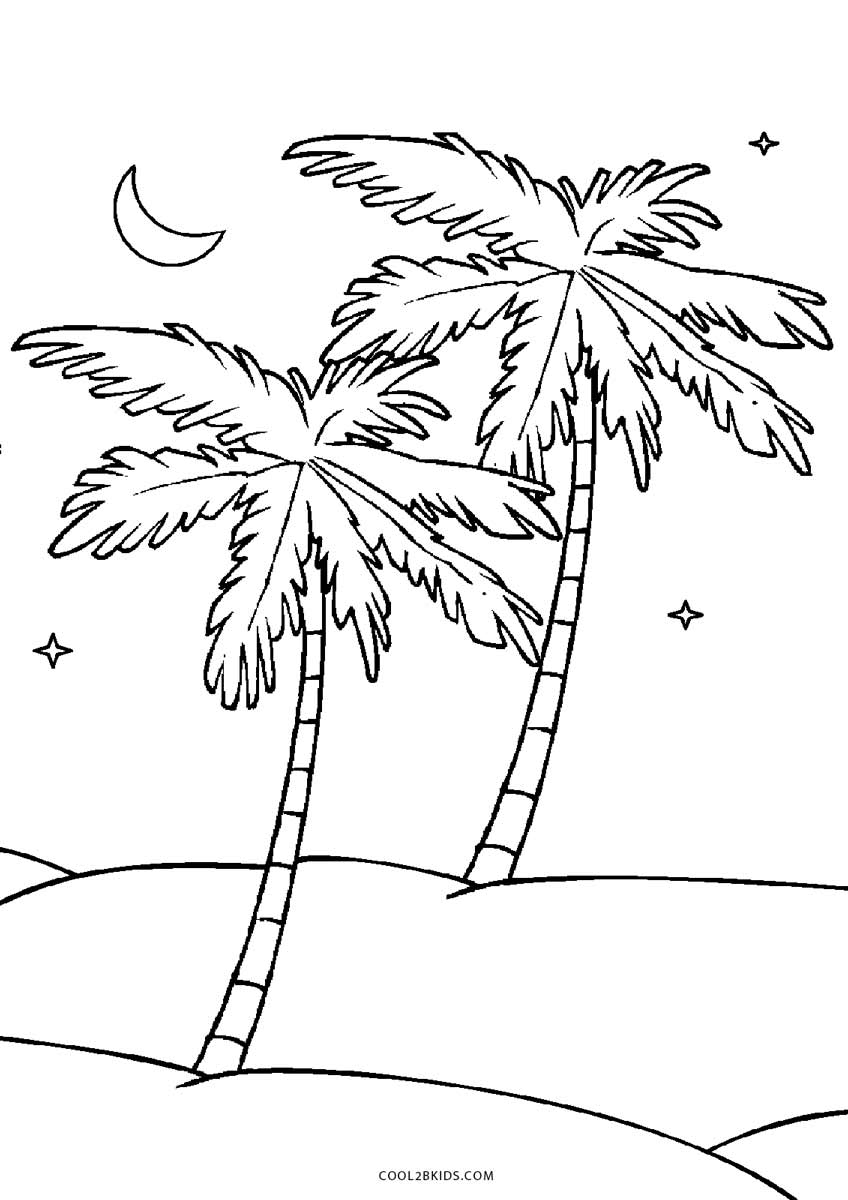 - Palm Tree Coloring Pages Free Printable Tree Coloring Pages For