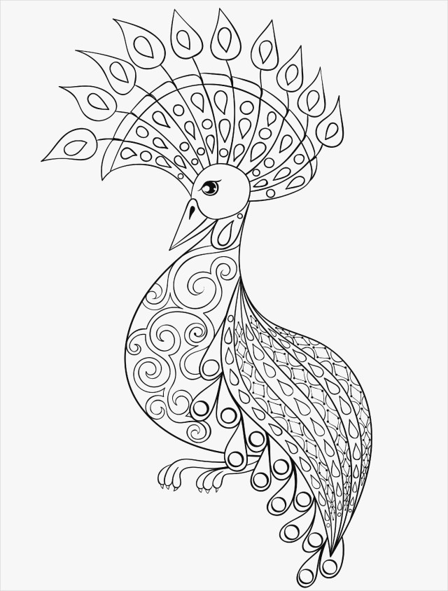 Peacock Coloring Pages Free Collection Of 40 Coloring Pages For Adults Peacock
