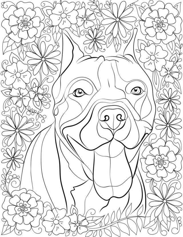 Pitbull Coloring Pages Pitbull Coloring Pages Printable Coloring Home