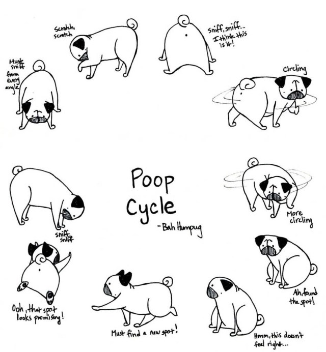 Pug Coloring Pages Best Of Easy Cute Pug Coloring Pages Design Great Collection