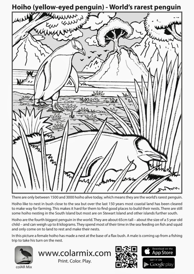Quiver Coloring Pages Pictures Of Quiver Coloring Page Kidskunst