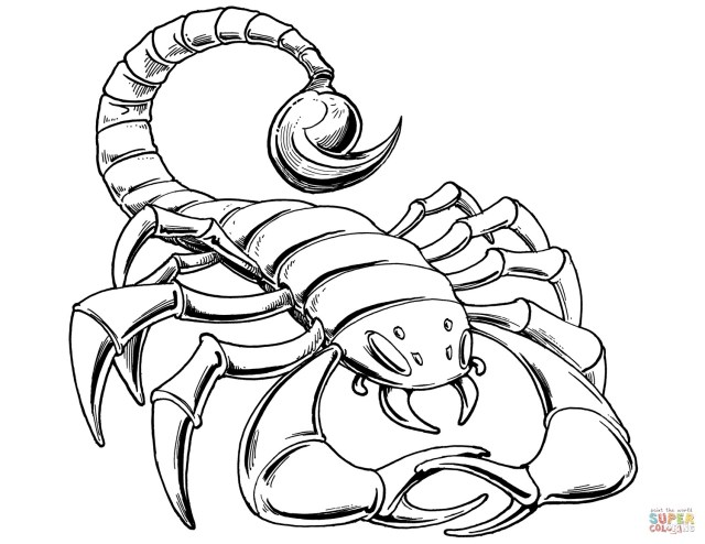 Scorpion Coloring Pages Scorpions Coloring Pages Cool Coloring Pages