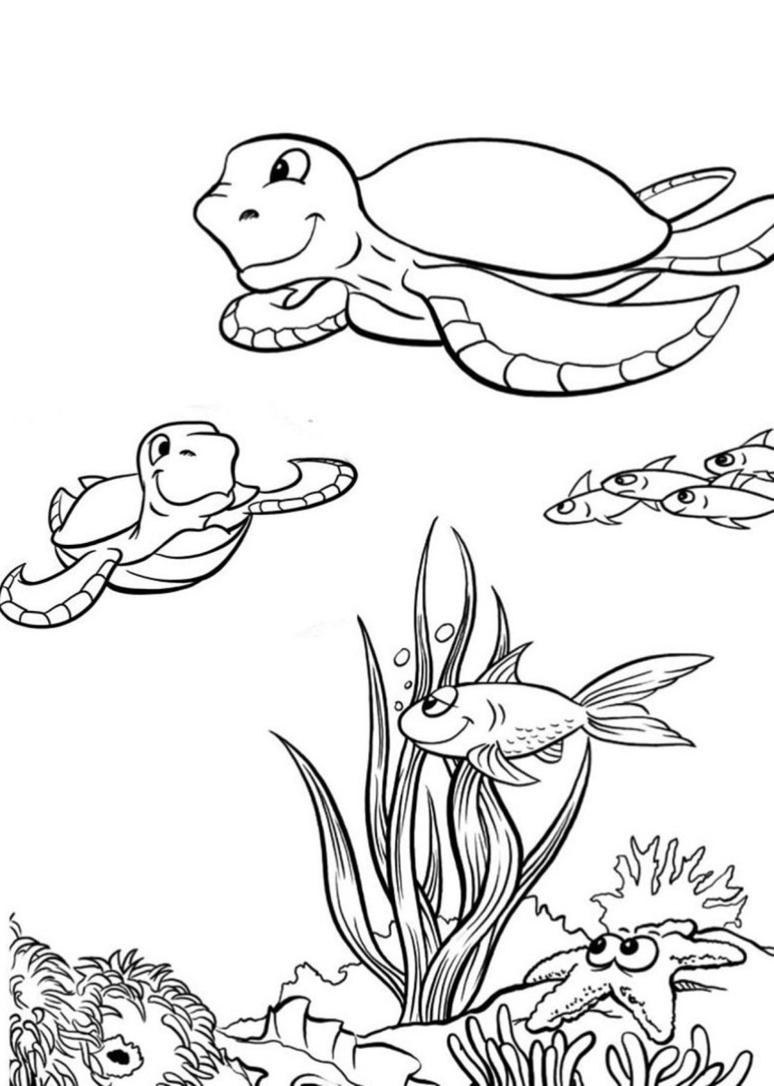 Sea Turtle Coloring Page Sea Turtle Coloring Page Printable Animal Coloring Pages Of