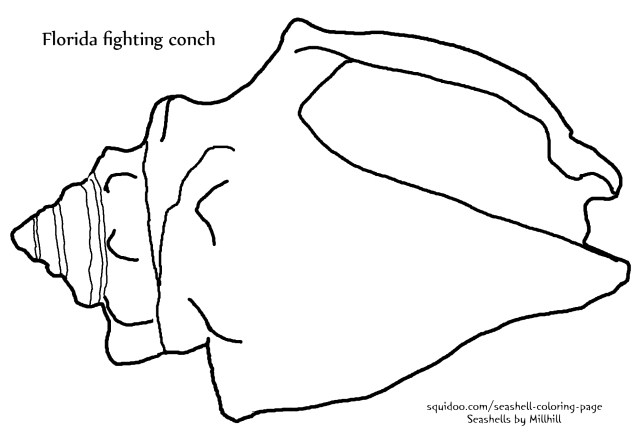 Seashell Coloring Pages Fighting Conch Seashell Coloring Page Seashells Millhill