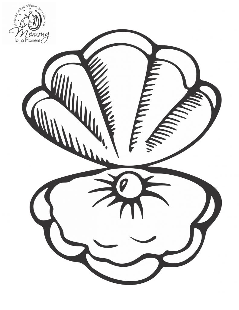 Seashell Coloring Pages Sea Shells Coloring Page Unique