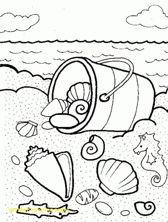 Seashell Coloring Pages Sea Shells Coloring Pages Shell Page With Mofassel Me Free 8501203