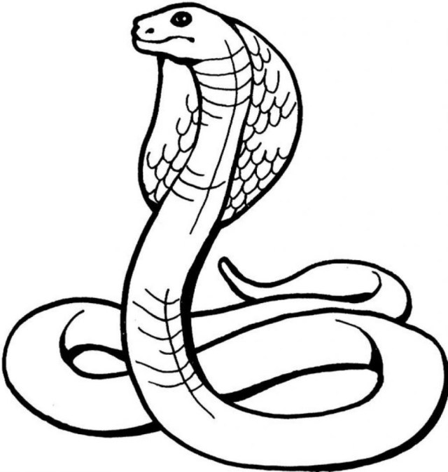 Snake Coloring Pages Coloring Page 32 Fantastic Snake Coloring Sheet