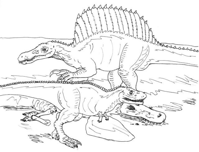 Spinosaurus Coloring Page Spinosaurus Coloring Pages Within Linefa New Year Color Realistic