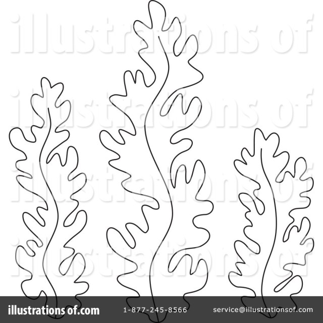 Weed Coloring Pages Sea Weed Coloring Pages Collection 20 D Seaweed Coloring Pages