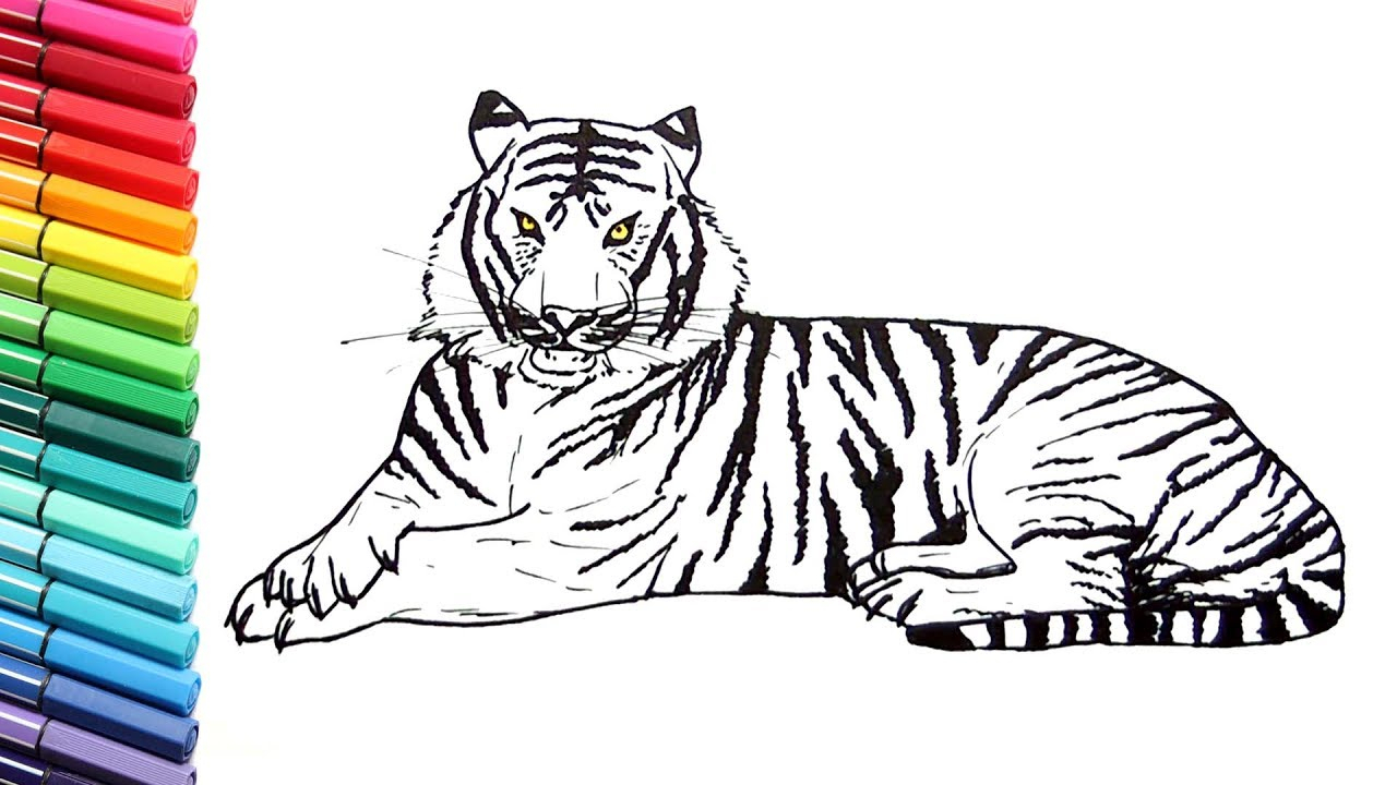 Wild Animal Coloring Pages Sketches Of Wild Animals For Kids Drawing And Coloring A Tiger How Birijus Com