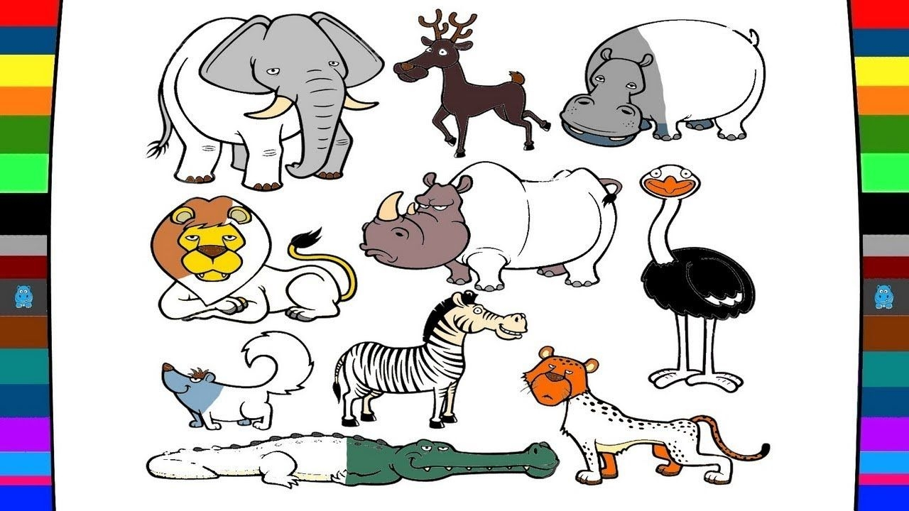 - Wild Animal Coloring Pages Wild Animals Coloring Pages Drawing And