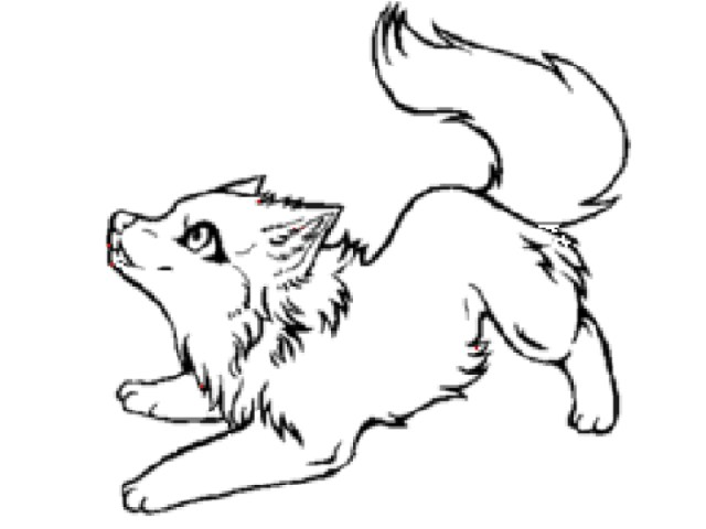 Wolf Coloring Pages Wolf Coloring Pages Free Download Best Wolf Coloring Pages On