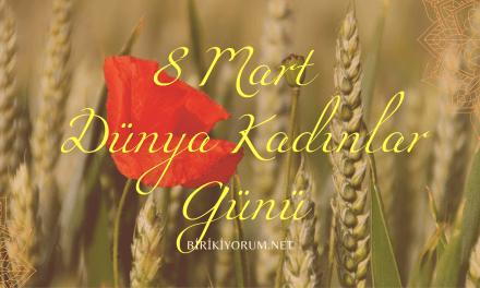 8 Mart Dünya Kadınlar Günü : Annem