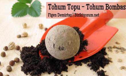 Tohum Topu ya da Tohum Bombası