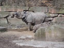 Bild: Unterwegs im Tiergarten Nürnberg mit der OLYMPUS µTough-6020.