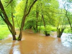 Hochwasser an der Wipper zwischen Biesenrode und Vatterode im Harz nach einem Frühlingsgewitter mit OLYMPUS µTough-6020.