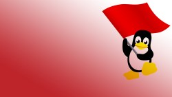 Bild_ Linux Server at it's end. No mote inodes free.