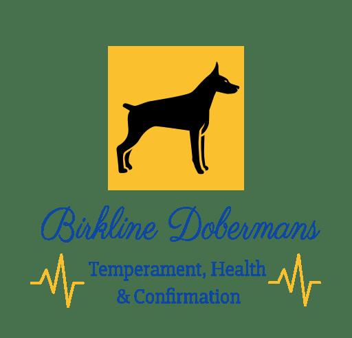 Birkline Dobermans
