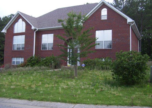 Short Sale/Foreclosure with overgrown lawn