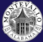 montevallo alabama sales statistics 2011