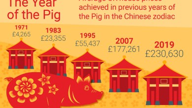 Photo of Chinese New Year 2019: The Year of the Pig