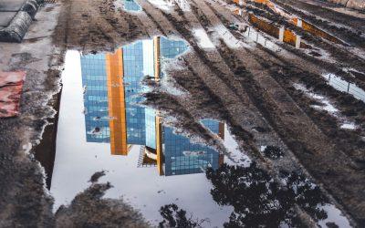 Shallow:  Kedangkalan Birokrasi di Era Modern