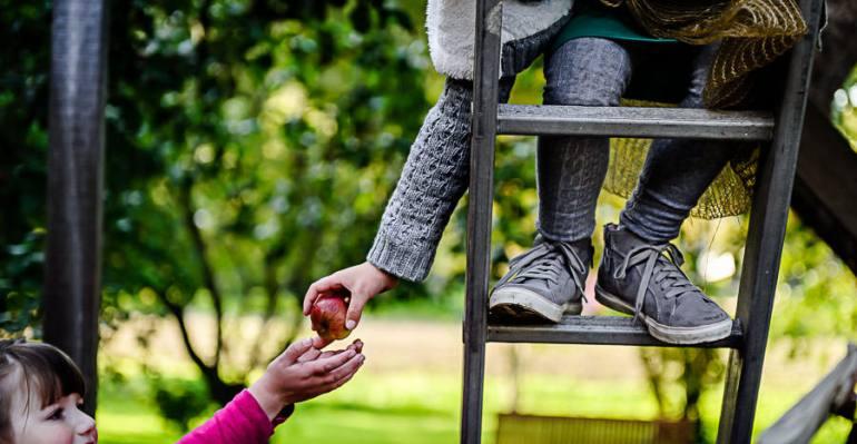 Familienshooting beim Äpfel pflücken