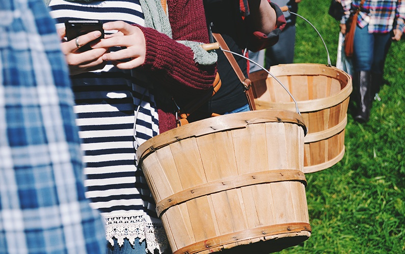 teens holding apple baskets with cellphone