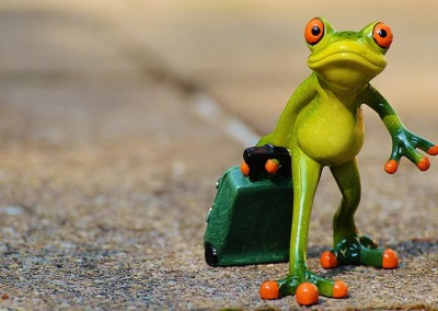 ceramic-frog-with-suitcase