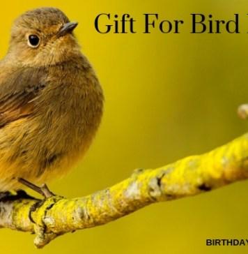 Gift For Bird Lover