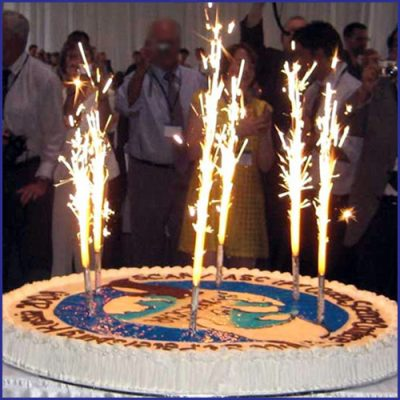 Birthday Sparklers Cake And Candle Sparkler Options For