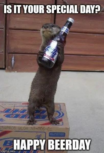 Birthday Drinking Meme : birthday, drinking, Original, Funny, Happy, Birthday, Memes