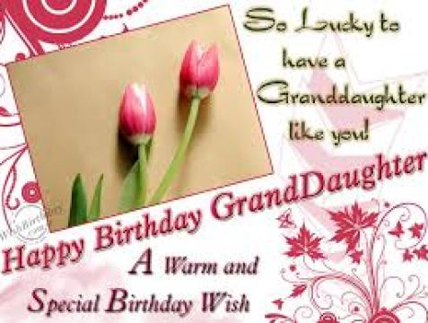 50 Happy Birthday Wishes For Grand Daughter Ever Birthday – Special Birthday Greeting