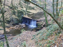 Baybachklamm Traumschleife, wasserfall k, Wanderung 1.11.15, B+M 2015-11-01 156