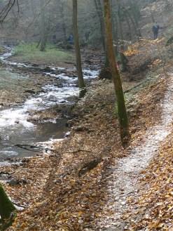 Baybachklamm Traumschleife, weg k , Wanderung 1.11.15, B+M 2015-11-01 077