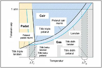 Sifat sifat larutan sifat koligatif larutan bisakimia diagram fasa koligatif ccuart Images