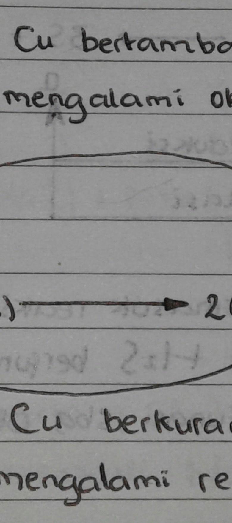 20171102_195422-1.jpg