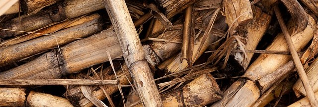 Metode Gasifikasi Biomassa