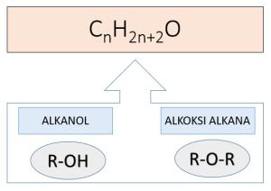 rumus molekul sama antara alkanol dan alkoksi alkana