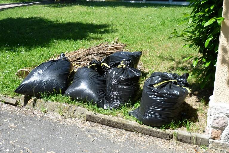 Arriva anche a Bisceglie la raccolta a domicilio degli sfalci vegetali