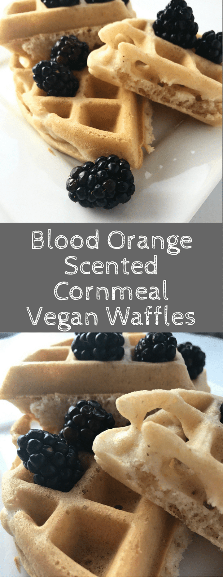 Blood Orange Scented Cornmeal Vegan Waffles are easy to whip up, fluffy, and full of flavor. Non-vegans won't even know they are missing anything! Vegetarian | Vegan | Breakfast | Comfort Food