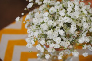 Baby's breath and chevron