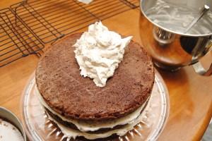 Chocolate Mint Cake12