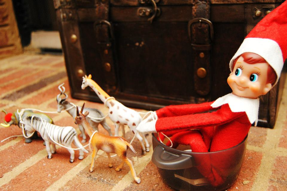 2012 Elf On The Shelf Biscuits N Crazy