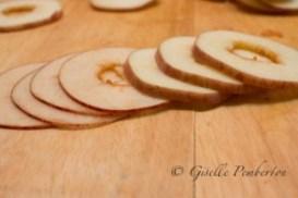 Apple_Chips_MG_2593