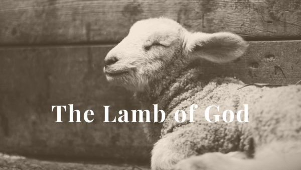 "The Lamb of God #3 ""For God So Loved"" Image"