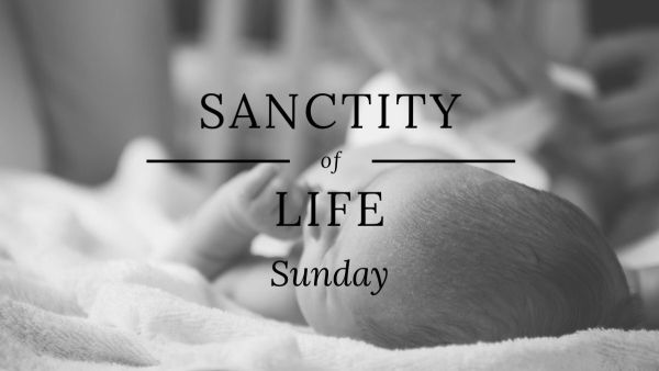 "Sanctity of Life Sunday 2019 ""God's Good Order"" Image"